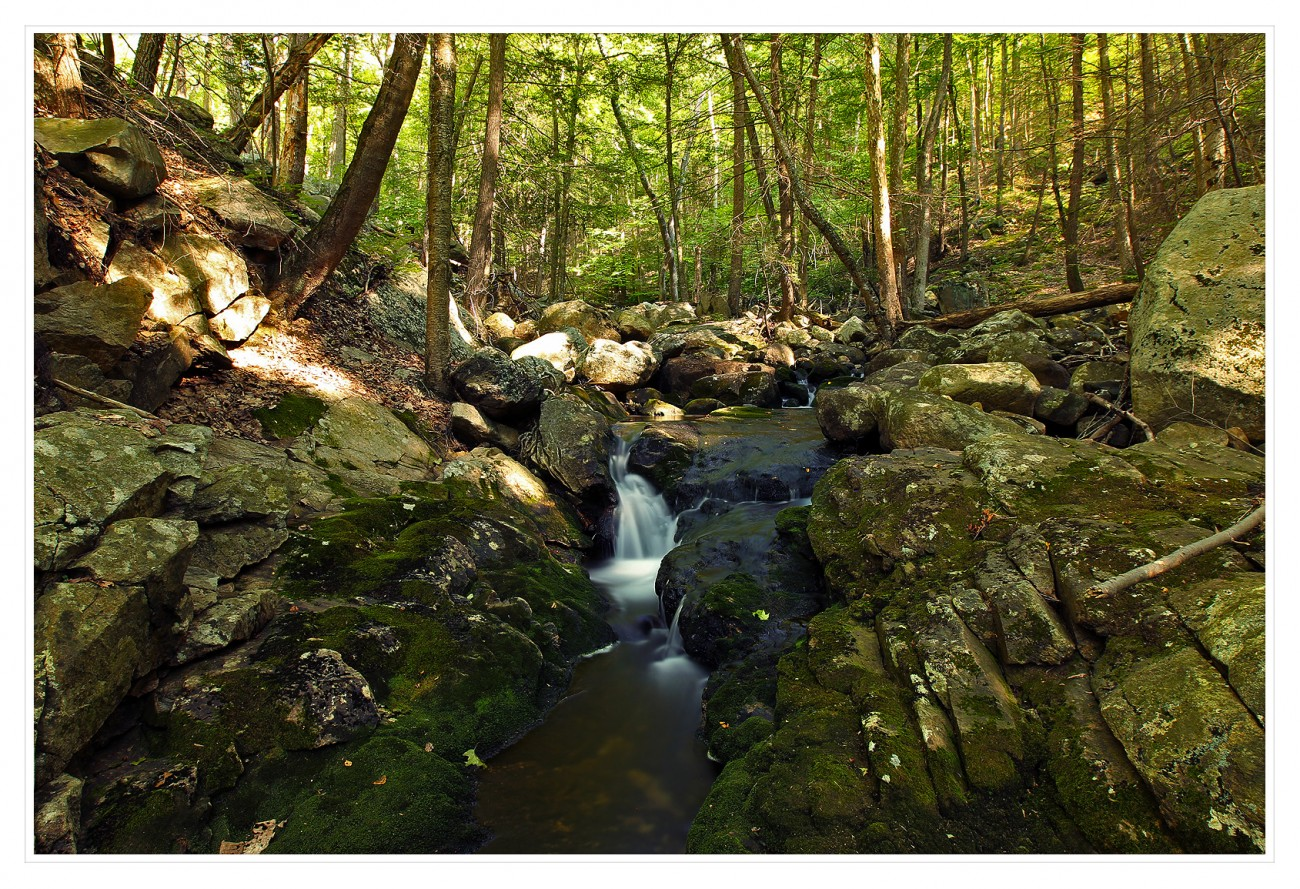 Harriman State Park 056