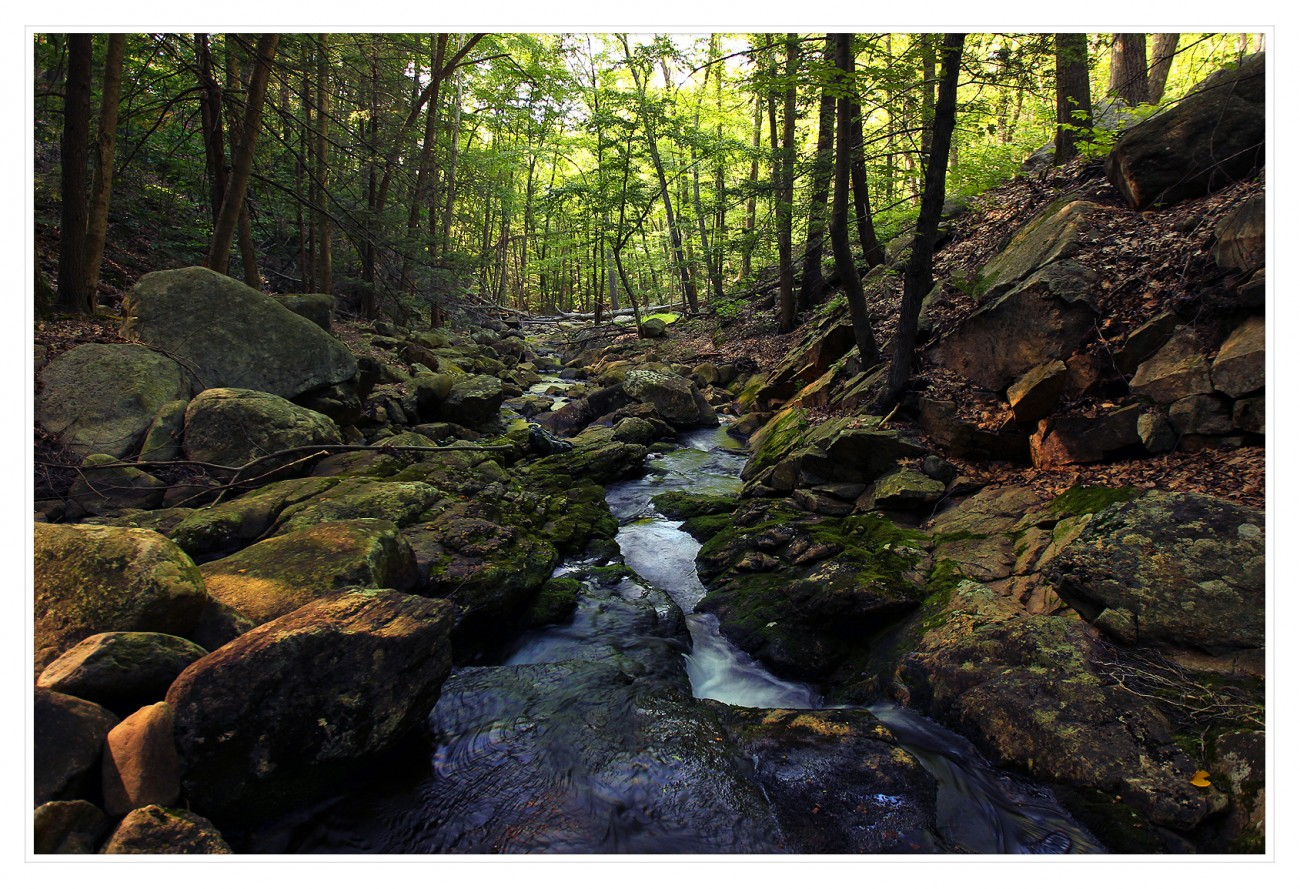 Harriman State Park 112